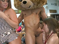Dancing bear getting booty shakes and titty grabs from group of sluts