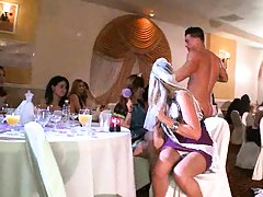 Dancing bear and the bride hitting the cock