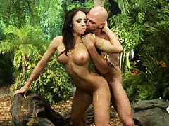 Chanel sits on a branch while fucked
