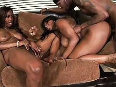 Chick getting doggy deep ito black pussy and anus